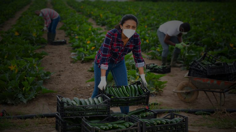 Canada's unions call for pathway to permanent residency for all migrant workers