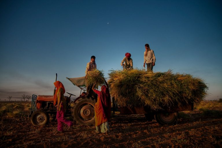 Canada's unions stand with India's farmers and farm workers